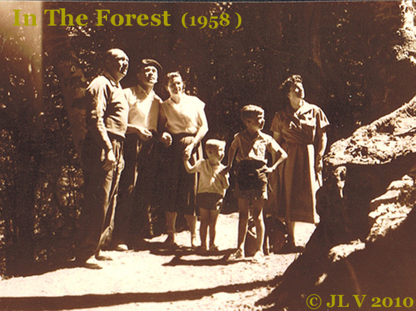 forest famille